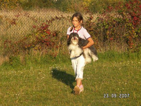 Haanský psík Lumpík